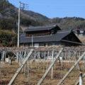 The Oomura house