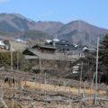 The Miyazawa house