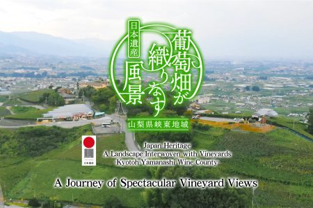 A Journey of Spectacular Vineyard Views(spring/summer)【Long Movie】