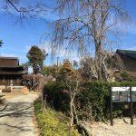 Story of Seihaku-ji Temple : A Temple Floating Amongst Vineyards